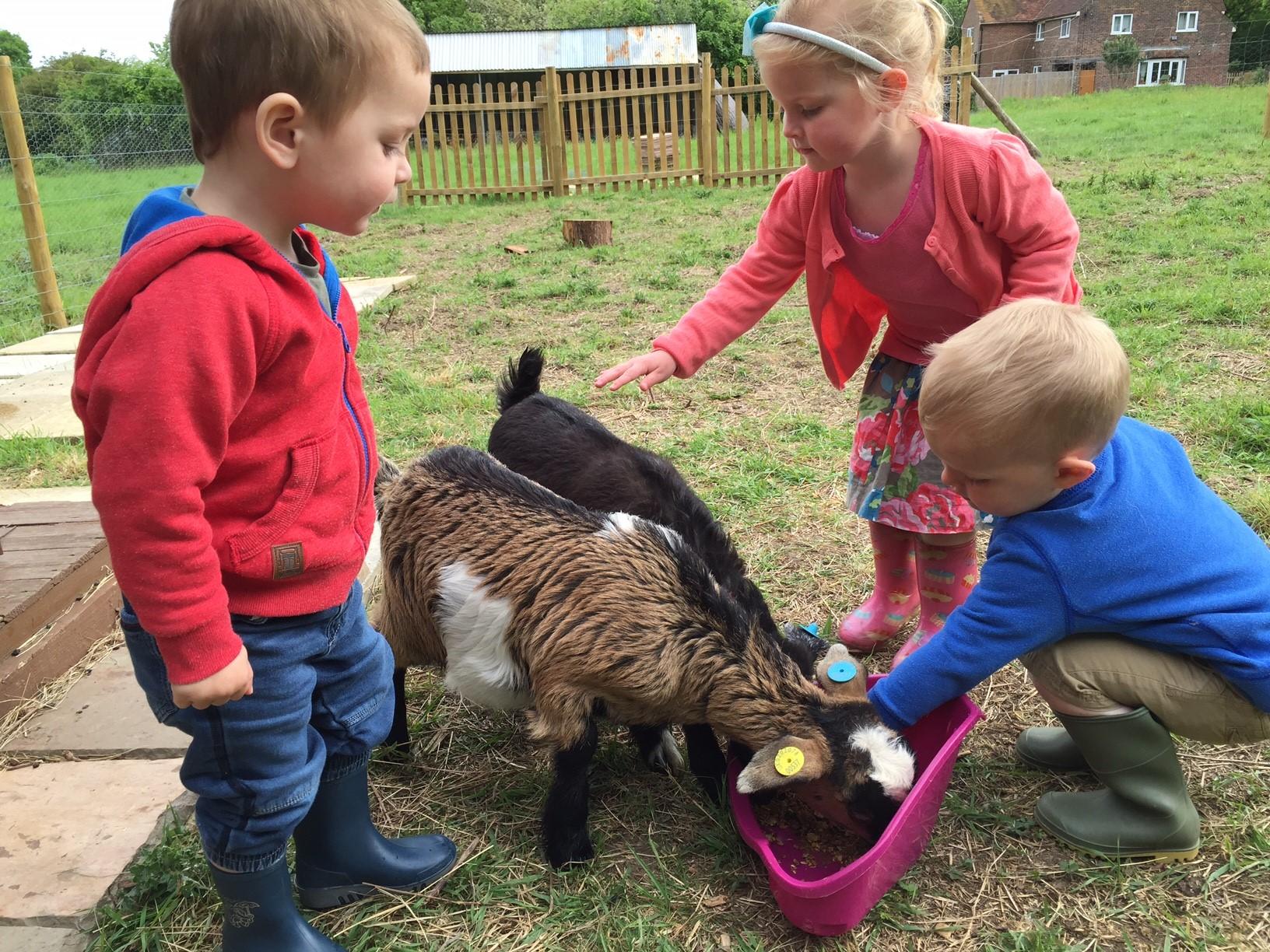 Enfants caressant 2 chèvres