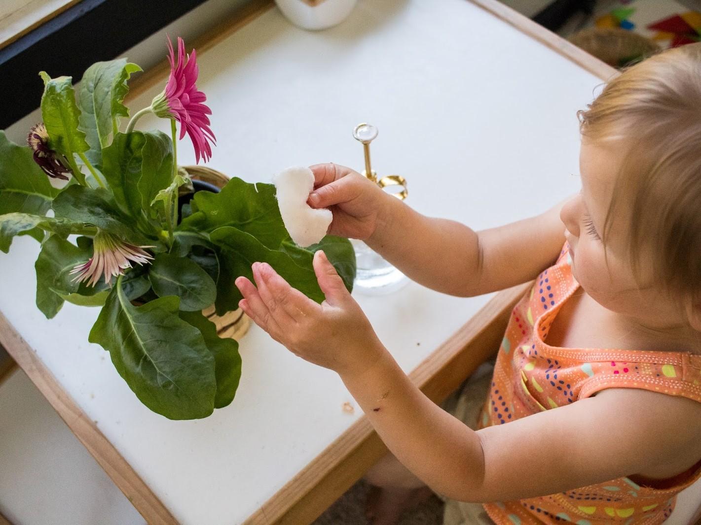 Prendre soin des plantes (2)