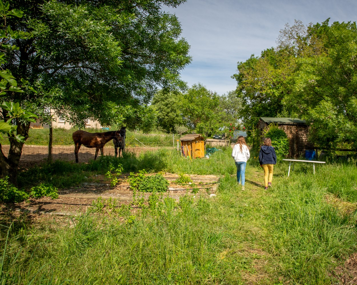 2 enfants marchant près d'un cheval